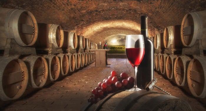 Découvrez nos vins de qualité